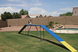 12' Competition Dog Walk - Adjustable
